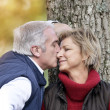 Middle-aged couple kissing by tree — Stock Photo