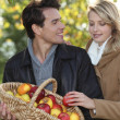 Couple picking apples — Photo #8324217
