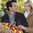 Stock Photo: Couple picking apples