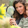 Stock Photo: Young mum and daughter looking at sunflower through magnifying glass
