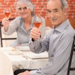 Elderly couple making a toast — Stock Photo
