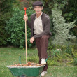 Gardener with a wheelbarrow — Stock Photo