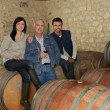 Three wine producers smiling in cellar - Stock Photo