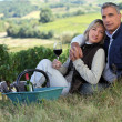 Couple drinking wine in a vineyard - ストック写真