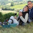 Couple drinking wine in a vineyard - Stock fotografie