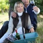 vino degustazione di coppia nel campo — Foto Stock