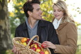 Couple picking apples — Stockfoto
