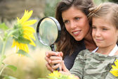 Young mum and daughter looking at a sunflower through a magnifying glass — Stock Photo
