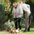 Elderly woman with her gardener — Foto Stock