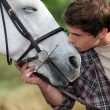 A man patting his horse — Stock Photo