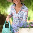 Lady watering flowers - Stock Photo