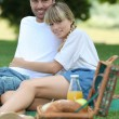 Young couple enjoying picnic - Stock Photo