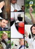 Oenologists and wine producers examining wine — Stock Photo