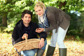 Couple gathering chestnuts — Stock Photo
