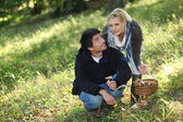 Couple picking mushrooms in a field — Stock Photo