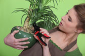 Woman tending to a plant — Stock Photo
