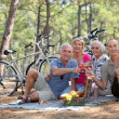 Two middle-aged couple having picnic — Stock Photo