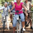Two middle-aged couples riding bicycles — Stock Photo #8340697