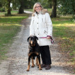 Woman walking dog - Stock fotografie