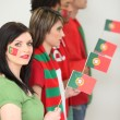 Stock Photo: Portuguese soccer fans