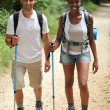 Stock Photo: Couple walking in countryside