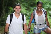 Two hikers in the woods — Stock Photo