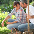 Smiling lovers doing gardening - 