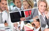 Business portraits — Stock Photo