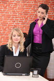 Female execs using a laptop in a restaurant — Stock Photo