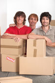 Three lads with packing boxes — Stock Photo