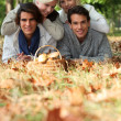 Group of friends gathering mushrooms — Stock Photo