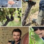 vinmakaren, vinkännare, druvor och vin — 图库照片