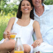 Couple having picnic in park — Stock Photo #8403476