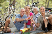 Four senior toasting at picnic — Stock Photo