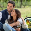 Couple enjoying picnic — Stock Photo