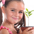 Young girl with an oak sapling — Stock Photo