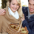 Couple collecting chestnuts — Stock Photo #8416233