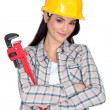 Woman with an adjustable wrench — Stock Photo #8417531