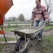 Man transporting cement in wheelbarrow — Stok fotoğraf