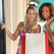 Stock Photo: Portrait of two girls with shopping bags