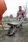 Man transporting cement in wheelbarrow — Stock Photo