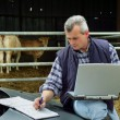Farmer with a laptop - Stock Photo