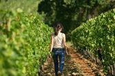 Woman walking in a vineyard — Stock Photo