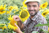 Portrait of a farmer — Stock Photo