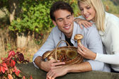 Young couple gathering mushrooms — Stock Photo
