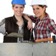 Stock Photo: Portrait of team of bricklayers