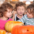 Kids preparing pumpkins for Halloween — Stock Photo #8477691