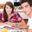 Young couple doing coursework at the kitchen table — Stock Photo #8478874