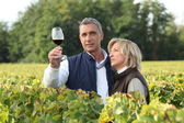 Couple tasting wine in vineyard — Stock Photo