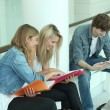Stock Photo: Three teenager revising together